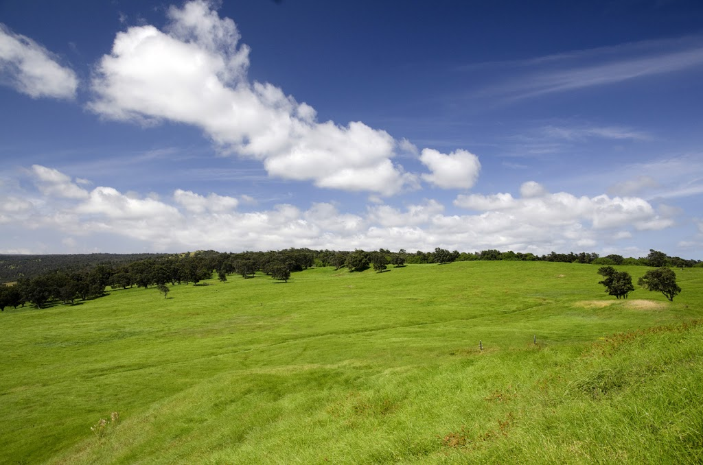 Fall is the Best Time to Visit the Big Island for Blue Skies Over Fields