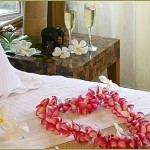 Romantic getaway in Hawaii