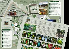 map-pdf-img