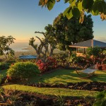 Holualoa-Gardens-11