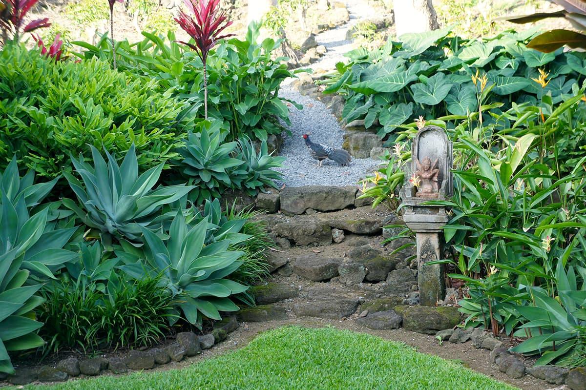 Zen buddha garden