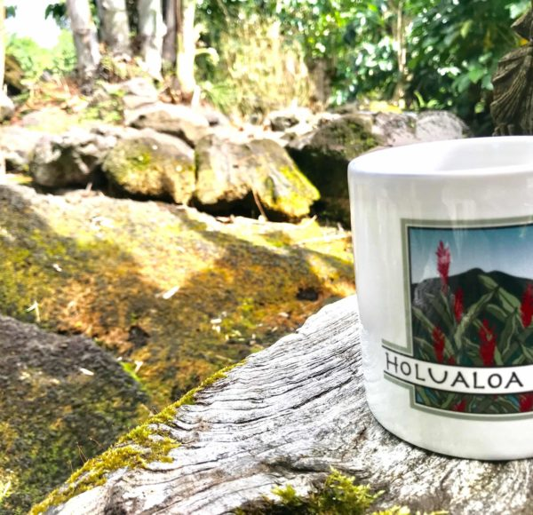 Holualoa Inn coffee mug in Kona coffee estate tropical gardens