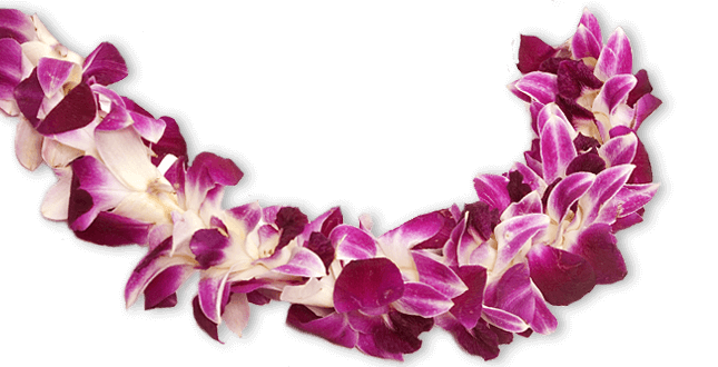 Lei of purple and white flowers in Hawaii