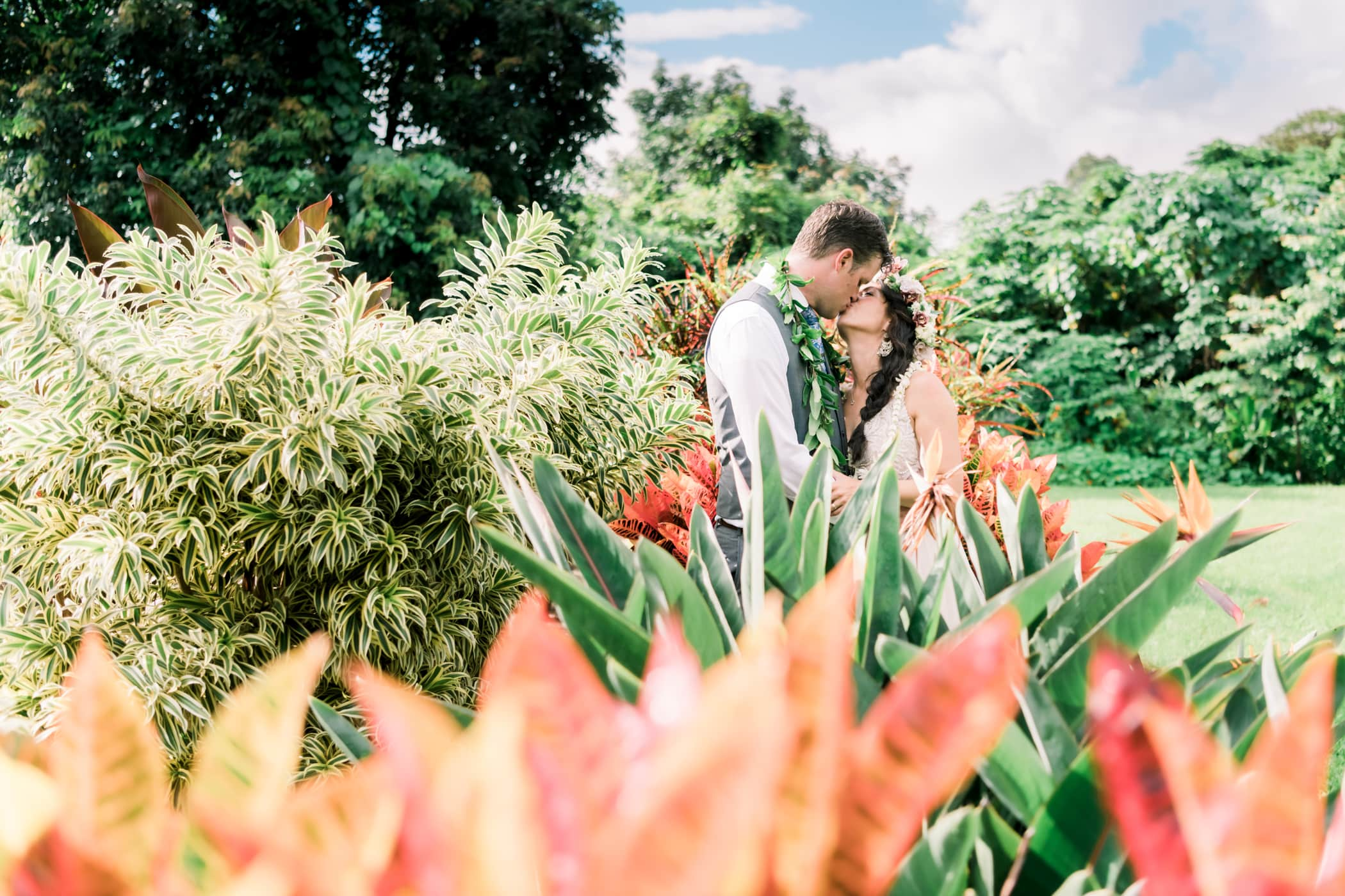 Tropical Wedding Ceremony Site