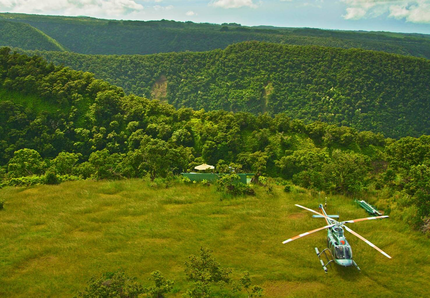 Helicopter Tour with lush greenery