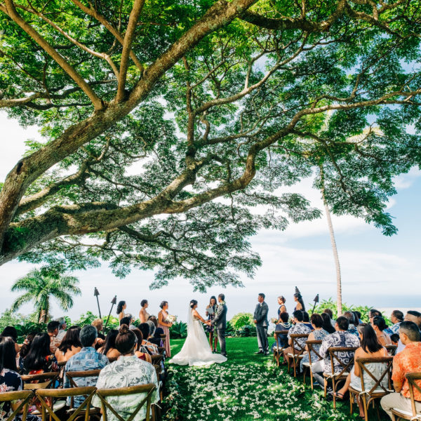 wedding ceremony at scenic big island wedding