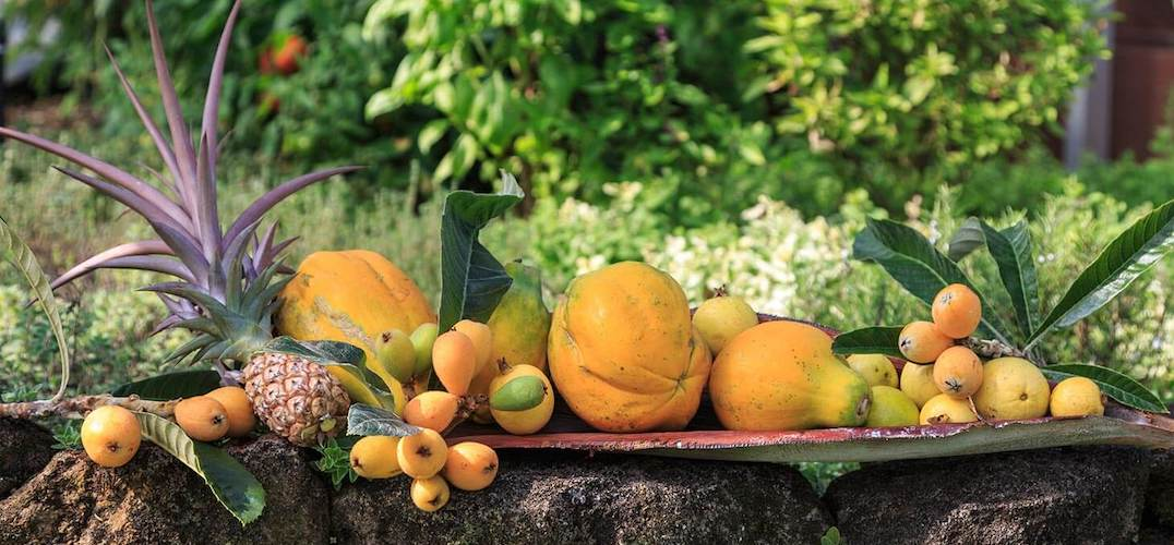 Farm to table tropical fruits in Hawaii