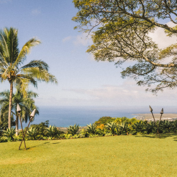 green lawn with tiki torches, palm trees and ocean views