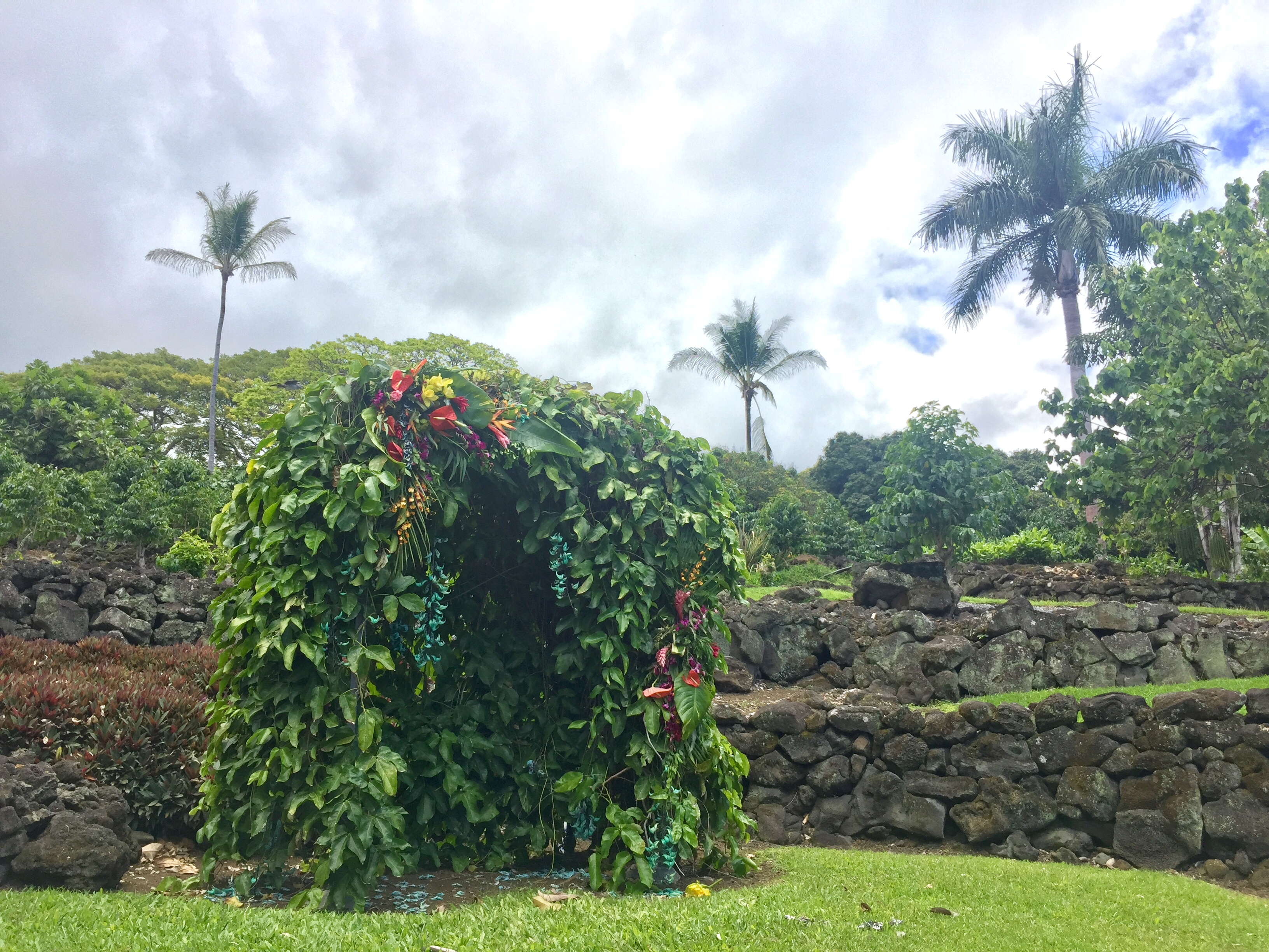 Natural Hawaiian Trellis