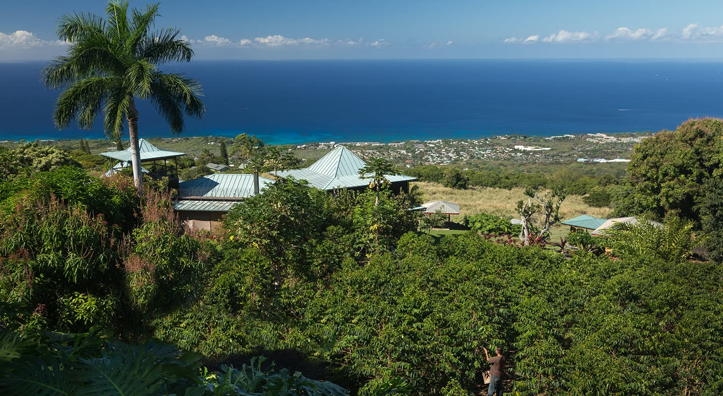 View of our Big Island boutique hotel from above